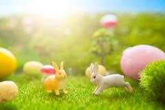 Concetto felice di Pasqua Uova di Pasqua variopinte e giocattoli dei conigli su erba verde Tramonto di fiaba sul campo verde di p Immagini Stock Libere da Diritti