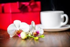 Concetto festivo della festa della mamma con la scatola rossa accogliente, Florida dell'orchidea immagini stock libere da diritti