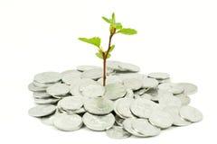 Concetto finanziario di sviluppo Fotografia Stock Libera da Diritti