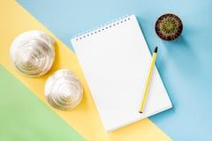 Concetto flatlay di vacanze estive con il blocco note, cactus, conchiglie su fondo blu-verde-giallo pastello Immagine Stock Libera da Diritti