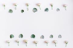 Concetto floreale con i fiori pastelli sul modello bianco di vista superiore del fondo fotografia stock libera da diritti