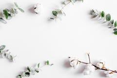 Concetto floreale con le foglie verdi sul modello bianco di vista superiore del fondo immagini stock libere da diritti