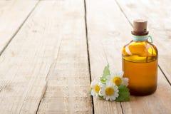 Concetto fresco della medicina alternativa della bottiglia e dell'erba Immagini Stock Libere da Diritti
