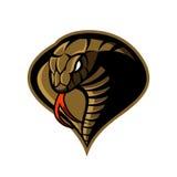 Concetto furioso di logo di vettore di sport della cobra isolato su fondo bianco Fotografia Stock