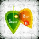 Concetto infographic dell'insegna delle foglie trasparenti Immagine Stock Libera da Diritti