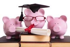 Concetto laureato di graduazione dello studente di college, successo di istruzione, certificato del diploma Immagini Stock Libere da Diritti