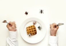Concetto marcio dell'alimento. Equipaggi la forcella della tenuta ed insetti e insetti del coltello Immagine Stock