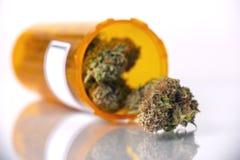Concetto medico della marijuana con i germogli asciutti della cannabis isolati sul whi fotografie stock libere da diritti