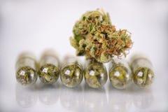 Concetto medico della marijuana con il germoglio e le capsule asciutti della cannabis fotografia stock
