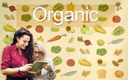 Concetto organico di agricoltura degli ingredienti della natura di nutrizione Fotografia Stock Libera da Diritti