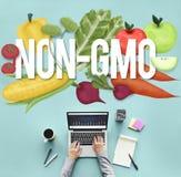 Concetto organico di tecnologia della pianta della natura di Non GMO Fotografie Stock