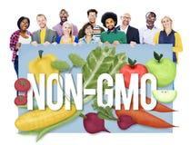 Concetto organico di tecnologia della pianta della natura di Non GMO Fotografie Stock Libere da Diritti