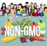 Concetto organico di tecnologia della pianta della natura di Non GMO Immagini Stock