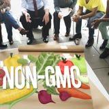 Concetto organico di tecnologia della pianta della natura di Non GMO Fotografia Stock Libera da Diritti