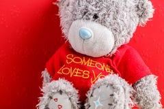 Concetto per le storie di amore e per il San Valentino Le parti di un orsacchiotto riguardano un fondo rosso con i cuori immagini stock libere da diritti