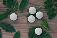 Concetto, pillole e piante della medicina di erbe Fotografia Stock Libera da Diritti