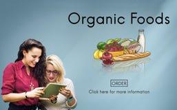 Concetto raffinato della natura di nutrizione ecologica degli alimenti organici Immagini Stock Libere da Diritti