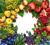 Concetto sano di frutti organici del cuore di forma naturale Immagine Stock Libera da Diritti