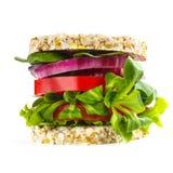 Concetto sano vegetariano dell'hamburger fotografia stock