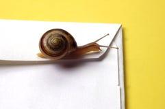 Concetto - snail mail Fotografia Stock Libera da Diritti
