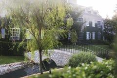 Concetto suburbano pacifico degli alberi verdi domestici Immagini Stock