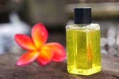 Concetto tropicale della stazione termale con il fiore di plumeria Immagini Stock Libere da Diritti
