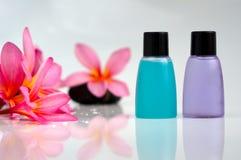 Concetto tropicale della stazione termale & di aromaterapia di benessere Immagini Stock