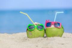Concetto tropicale di viaggio di vacanza, giovane menzogne fresca della noce di cocco due immagine stock libera da diritti