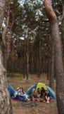 Concetto turistico della foresta di rilassamento del gruppo degli amici fotografia stock libera da diritti