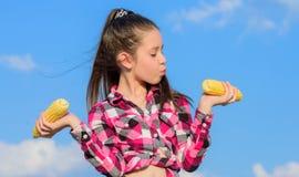 Concetto vegetariano di nutrizione Pannocchia di granturco gialla della tenuta della ragazza del bambino sul fondo del cielo Semi immagine stock