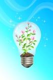 Concetto verde Fotografia Stock Libera da Diritti