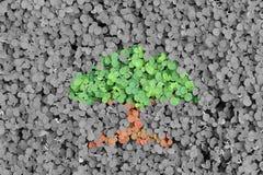 Concetto verde Immagine Stock