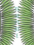 Concevez le fond avec des feuilles des palmiers dans le style de croquis Images libres de droits