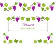 Concevez les éléments avec des groupes de raisins et de vignes Photo libre de droits