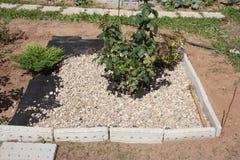 Concevez les lits de gravier qui n'ont pas cultivé l'mauvaise herbe Image stock