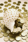 Conch and Coins Royalty Free Stock Photography