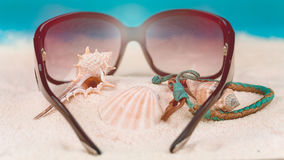 Conch and other sea shells and sunglasses on beach.  Royalty Free Stock Photo