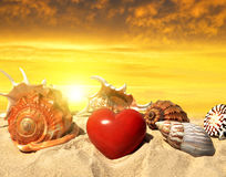 Conch shell with heart on beach Stock Photos