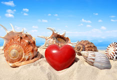 Conch shells with heart. On beach Stock Images