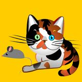 A concha de tartaruga britânica do gato do vetor travou o rato Imagens de Stock Royalty Free