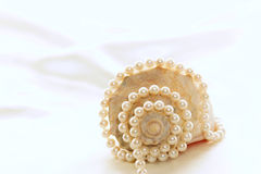 Concha grande con las perlas 4 Fotos de archivo libres de regalías