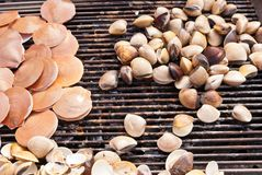 Concha marina asada a la parrilla fuego en el Bbq foto de archivo