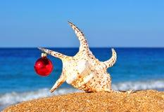 Concha marina de la Navidad y chuchería de la Navidad en la playa Fotos de archivo libres de regalías