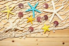Concha marina, estrellas de mar y red de pesca Foto de archivo