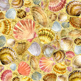 Concha marina y arena de mar Fotografía de archivo