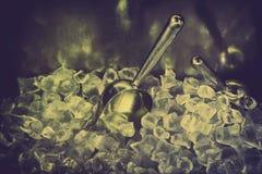 Concha metálica com cubos de gelo Fotografia de Stock