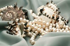 Conchas de berberecho y perlas imagen de archivo libre de regalías