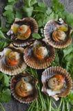 Conchas de peregrino con los chiles Foto de archivo