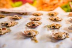 Conchas de peregrino en el mercado de pescados de Rialto en Venecia, Italia Imagen de archivo libre de regalías