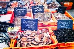 Conchas de peregrino y mejillones frescos en el mercado de pescados Imagen de archivo